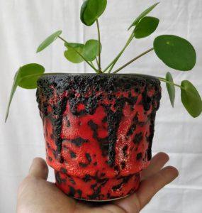 Svart och röd keramikkruka med elefantöra i