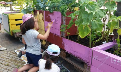 Pallkragar med olika växter. Två flickor som målar pallkragarna i rosa.