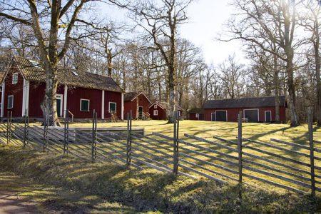 Två röda hus och staket runt en gräsmatta. Tre träd i trädgården, fler bakom husen.